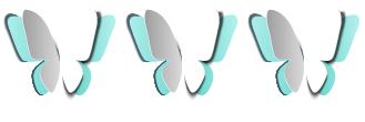 3Butterflies_white-01